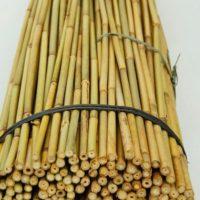 bamboestok bamboestokken